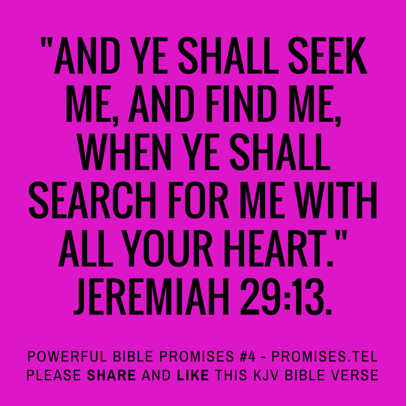 search kjv bible